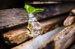 15 idee creative sul riciclo e il riuso
