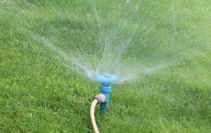 Guida all'irrigatore più adatto alle proprie aree verdi